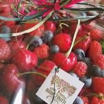 """I prodotti coltivati dal'azienda """"Buoni Frutti""""."""