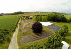 Foto area di uno dei terreni di Oasi Mosaico.